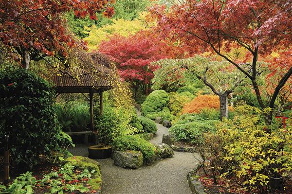 """Mit die schönste Jahreszeit in der Pflanzenwelt ist der Herbst Die Farbenpracht und -vielfalt ist in dieser Jahreszeit unübertroffen. Zwar geht die Saison langsam zu Ende, Genuss und leuchtende Farben bleiben allerdings auch in den späten Monaten des Jahres erhalten. Denn erst tauchen die Herbstblüher den Garten in ein knalliges Bunt, dann leuchtet das Herbstlaub feurig. Und auch spät im Herbst hat das heimische Umfeld seinen Reiz, wenn man dort gemütlich sitzen kann und der Blick auf leuchtende Beeren und filigrane Gräser fällt. Beete, Rasen und Gehölze müssen derweil sorgsam auf den Winter vorbereitet werden, damit sie gut ins nächste Jahr kommen. Nach dem ersten Nachtfrost müssen Gartenfreunde alle nicht winterfesten Knollen, wie die von Dahlien, Gladiolen oder Begonien, ausgraben. Sie überwintern im Keller in einer Kiste oder in trockenem Torf. In den Rabatten ist stattdessen Platz für Frühblüher. """"Bis zum ersten Frost können Zwiebeln und Knollen gepflanzt werden. Bei Allium-Zwiebeln ist es besonders wichtig, dass sie noch einwurzeln und sich an ihren Standort gewöhnen"""", heißt es beim Bundesverband Deutscher Gartenfreunde in Berlin. Karl A. Vandeven ist Landschaftsarchitekt und Stadtplaner und im Horber Kloster ein """"alter Bekannter""""."""