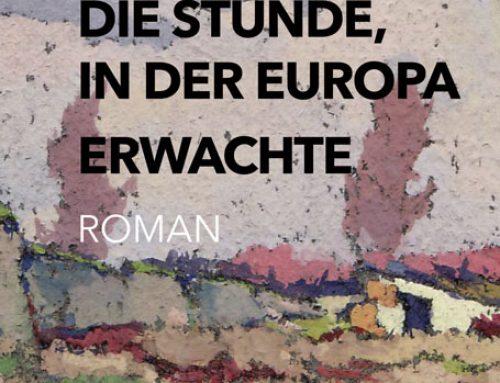 Die Stunde,  in der Europa  erwachte – Literatur